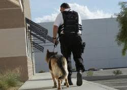 Services : Chargé de Sécurité, SSIAP, ADS, MC, DPS, Agent d'accueil 2